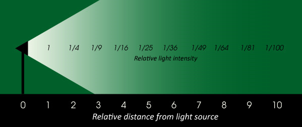 Artificial Lighting Intensity on orchid diagram